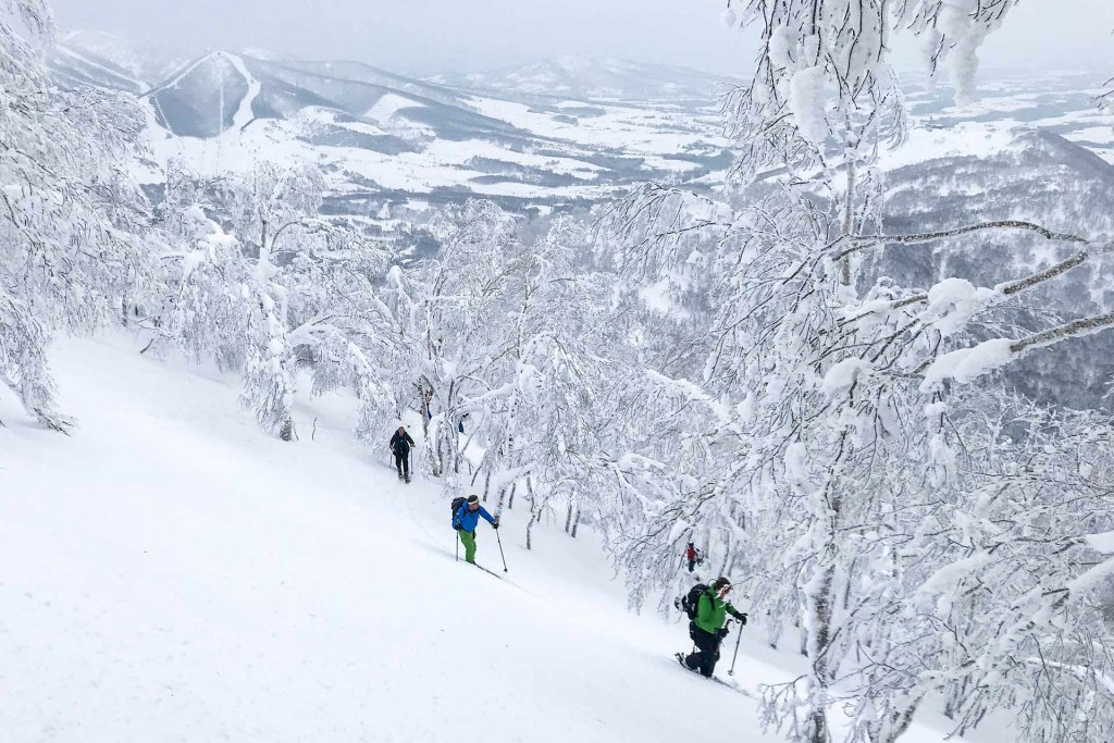 Epique - freeride freetour niseko Japan
